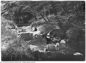 1916 wychood park creek